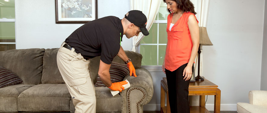 Somerset, PA carpet upholstery cleaning